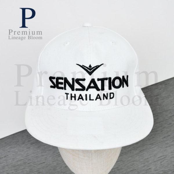 สินค้าพรีเมี่ยม หมวกฮิปฮอป โลโก้ SENSATION - 1