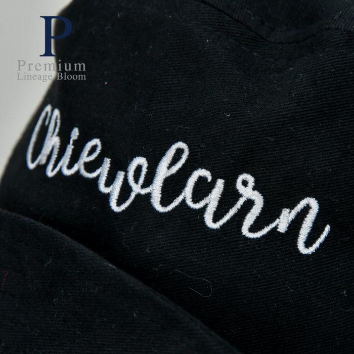 หมวกปีกรอบ โลโก้ Chiewlarn - 7
