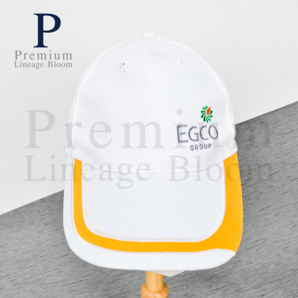 ของพรีเมี่ยม หมวกแก๊ป ปักโลโก้ EGCO