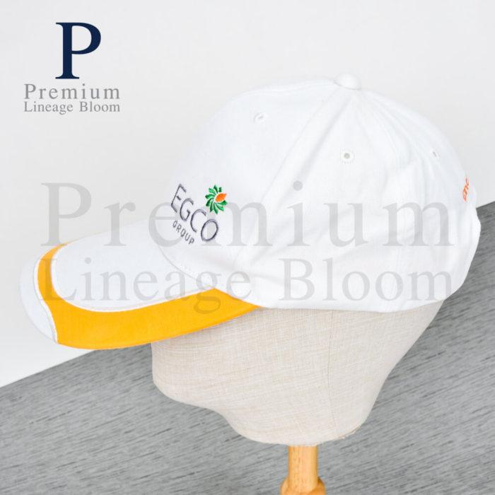 หมวกแก๊ป โลโก่ EGCO - 2