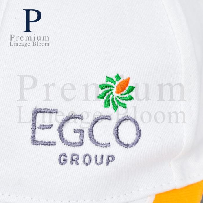 หมวกแก๊ป โลโก่ EGCO - 6